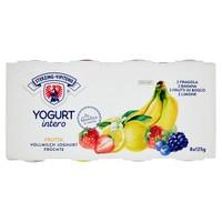 Yogurt Intero Fragola Banana Limone Frutti Di Bosco Vipiteno
