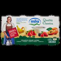 Yogurt Mila Frutta