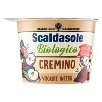 Yogurt Biologico Ricorda Il Gelato Cremino Scaldasole