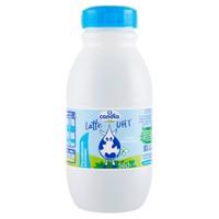 Latte P . s . Uht Candia