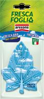 Profumatore Per Auto Fresca Foglia Cartoncino Arexons