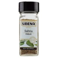 Salvia Foglie Ubena