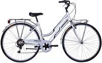 Citi Bike Donna