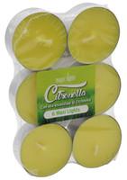 6 Maxi T-Lights Citronella
