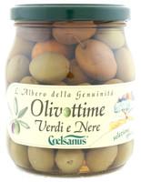 Olivottime Coelsanus