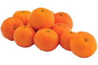 Clementine Fiorone