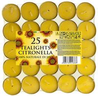 50 T-Lights Citronella