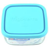 Frigoverre Cl . 100