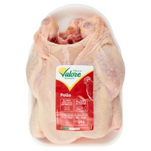 POLLO EVISCER. FILIERA